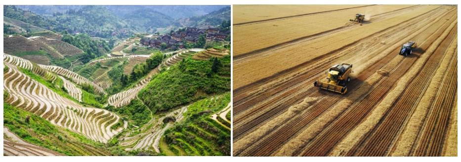 Сельские районы Китая
