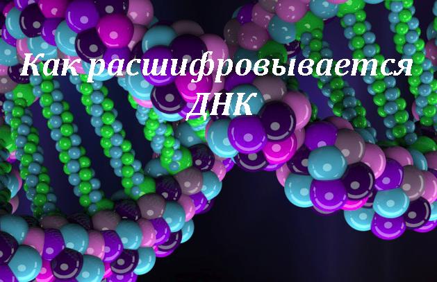 ДНК картинка записи