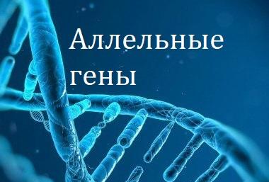 Аллельные гены