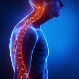 Кифоз позвоночника — симптомы, виды кифоза и лечение
