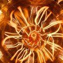 Вольфрам и температура его плавления: интересные факты о вольфраме