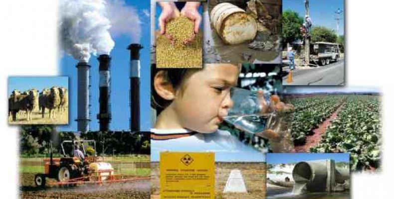 Рефераты по экологии